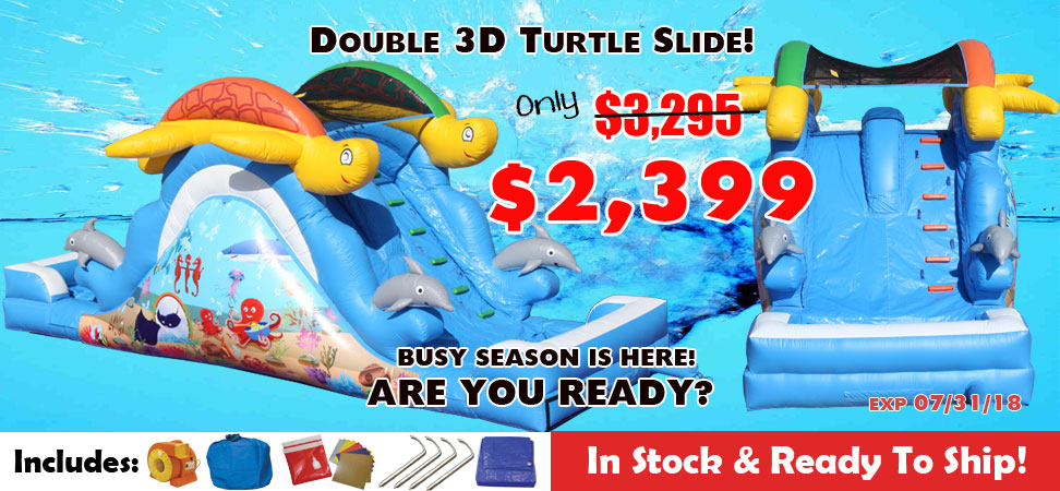 Turtle commercial double lane slide